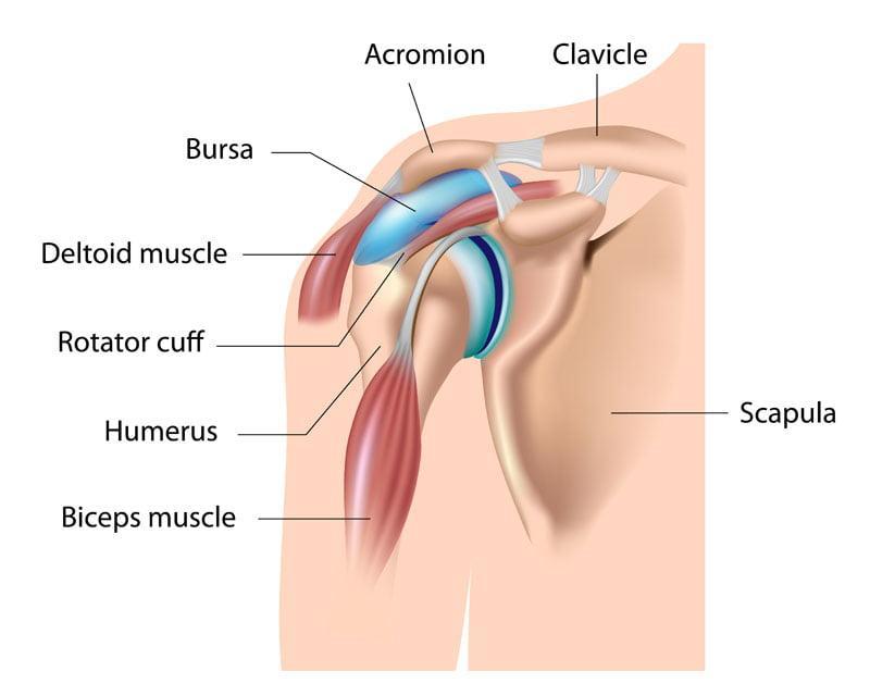 Травма плечевого сустава и лечение