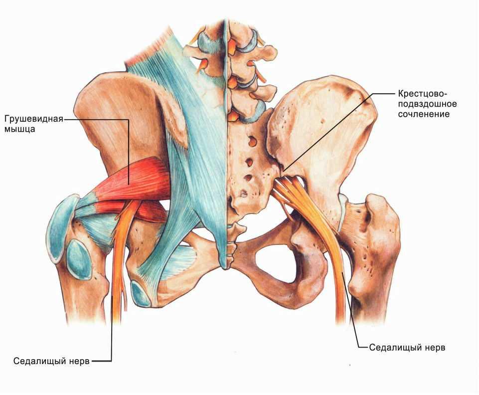 Осложнения некроза тазобедренного сустава артрит и артроз плечевого сустава