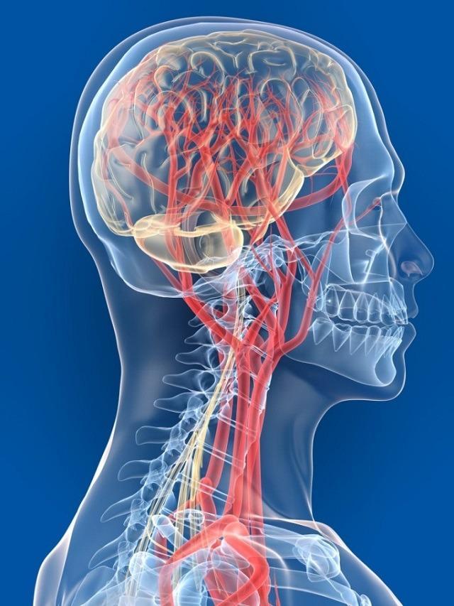 Симптомы и лечение грыжи шейного отдела позвоночника: можно ли обойтись без операции при помощи лекарств, гимнастики, массажа?