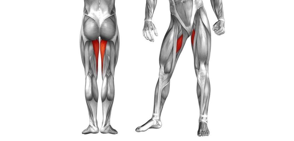 Дегенеративно дистрофические изменения тазобедренных суставов